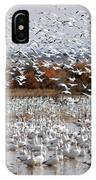 Snow Geese No.4 IPhone Case