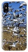 Snow Goose Flock Taking Off IPhone Case