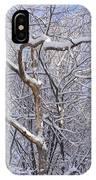 Snow In Connecticut IPhone Case