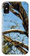 Snow In Oak IPhone Case
