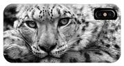 Snow Leopard In Black And White IPhone Case