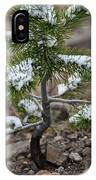 Snow On Baby Pine Tree In Yellowstone IPhone Case