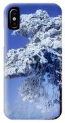 Snow Pine IPhone Case