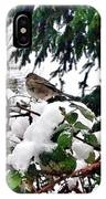 Snow Scene Of Little Bird Perched IPhone Case