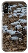 Snows And Aleutians Feeding IPhone Case