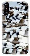 Snows Ross And Aleutians IPhone Case