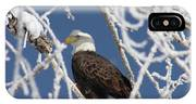 Snowy Bald Eagle IPhone Case