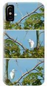 Snowy Egret Triptych IPhone Case