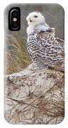 Snowy Owl In Florida 14 IPhone Case