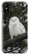 Snowy Owl IPhone X Case