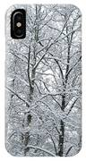 Snowy Tree Limb Maze II IPhone Case