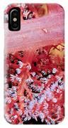 Soft Corals 2 IPhone Case