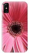 Softly In Pink - Zinnia IPhone Case
