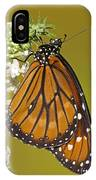 Soldier Butterfly Danaus Eresimus IPhone Case
