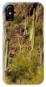 Sonoran Desert West Saguaro National Park IPhone Case