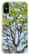 Southern Cypress IPhone Case