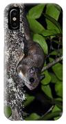 Southern Flying Squirrel IPhone Case