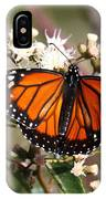 Southern Monarch Butterfly IPhone Case