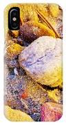 Spadefoot Toad Near Stones On Capitol Gorge Pioneer Trail In Capitol Reef National Park-utah IPhone Case