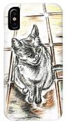 Spanish Cat Waiting IPhone Case