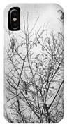 Sparrows IPhone Case