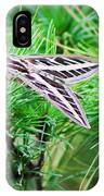 Sphinx Moth IPhone Case