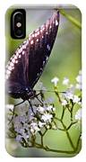 Spicebrush Swallowtail Butterfly IPhone Case