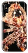 Spider - Hairy IPhone Case