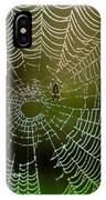 Spider In Web 3 IPhone Case
