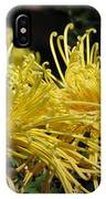 Spider Mums Maybe 1 IPhone Case