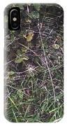 Spider Web Art. IPhone Case