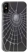 Spider Web With Frost IPhone Case