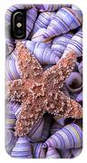 Spiral Shells And Starfish IPhone Case