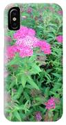 Spirea In Bloom IPhone Case