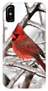 Splash Of Red IPhone Case