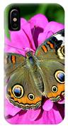 Spotted Butterfly On Pink Flower IPhone Case