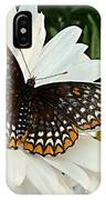 Spotted Butterfly IPhone Case