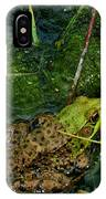 Spotted Frog IPhone Case