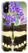 Spread Your Wings My Little Butterfly  IPhone Case