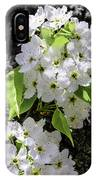 Spring Apple Blossoms IPhone Case