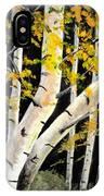 Spring Birch IPhone X Case