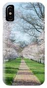 Spring Cherry Trees IPhone Case