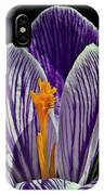 Spring Crocus IPhone Case