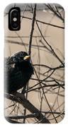European Starling IPhone Case