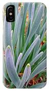 Spring Daffodil Plant IPhone Case