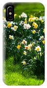 Spring Daffodils. Park Keukenhof IPhone Case