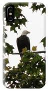 Spring Eagle Vi IPhone Case