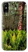 Spring Ferns Of The Blue Ridge 3 Ap IPhone Case