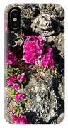 Spring From Rocks IPhone Case