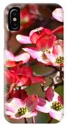 Spring Has Sprung IPhone Case
